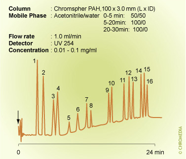 PAH analysis by gradient elution