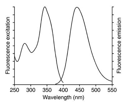 excitation (left) fluorescence spectrum (right)